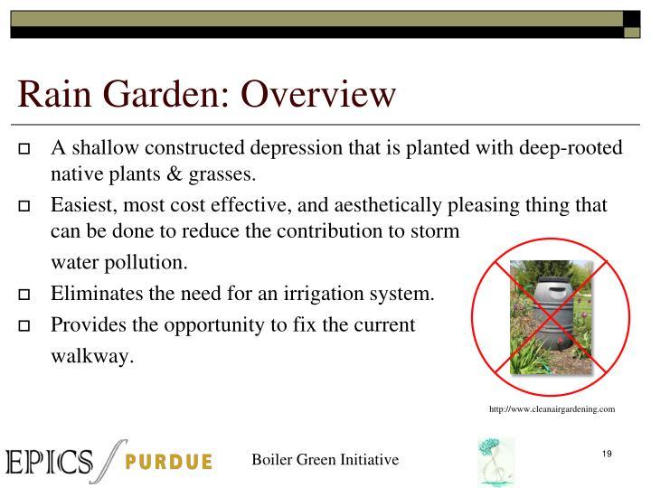 Rain Garden: Overview