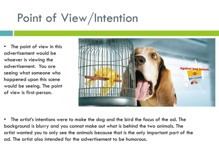Point of View/Intention