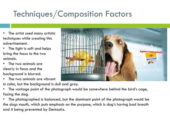 Techniques/Composition Factors