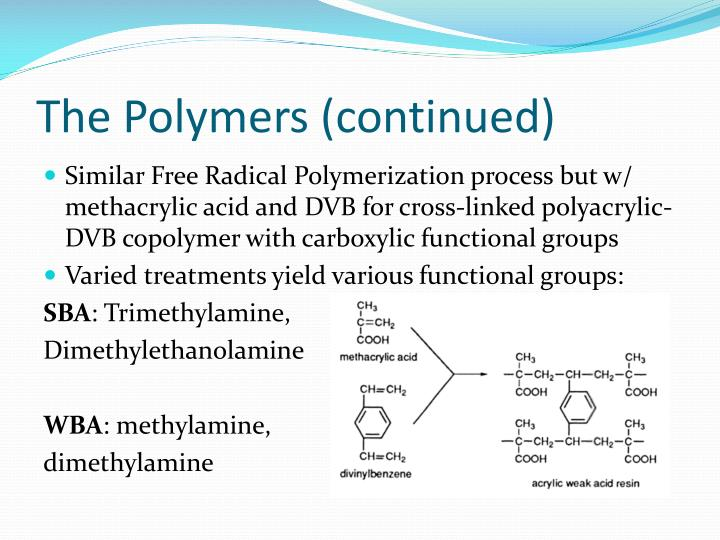 The Polymers (continued)