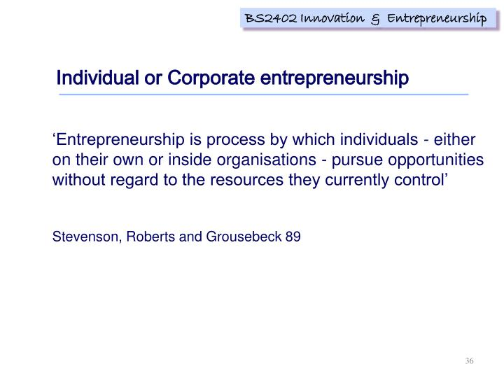 Individual or Corporate entrepreneurship