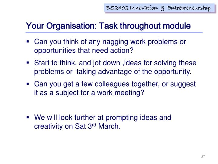 Your Organisation: Task throughout module