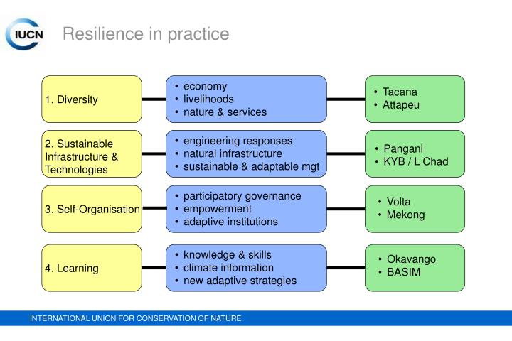 Resilience in practice