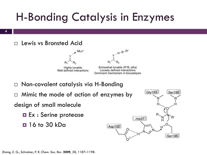 H-Bonding Catalysis in Enzymes