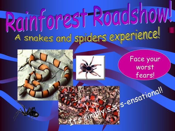 Rainforest Roadshow!