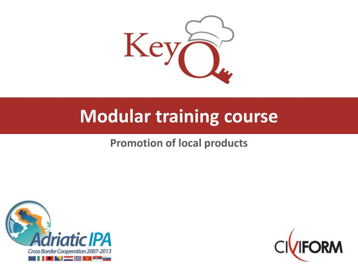 Modular training course