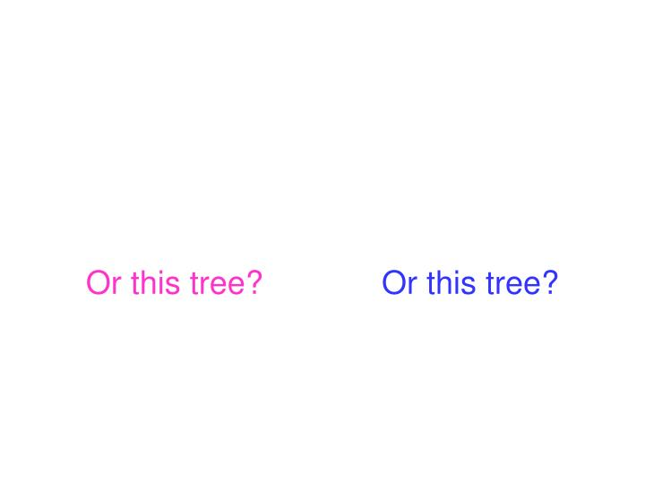 Or this tree?