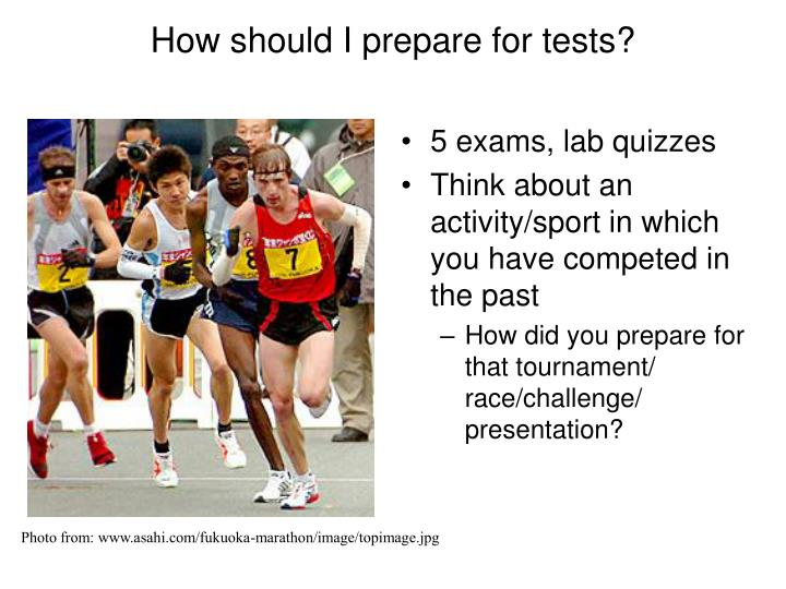 How should I prepare for tests?
