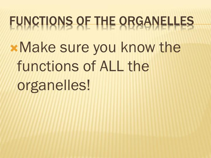 Make sure you know the functions of ALL the organelles!