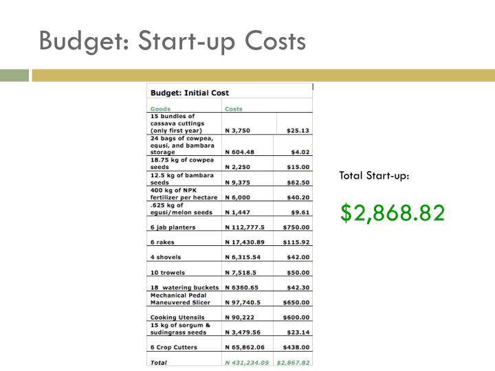 Budget: Start-up Costs