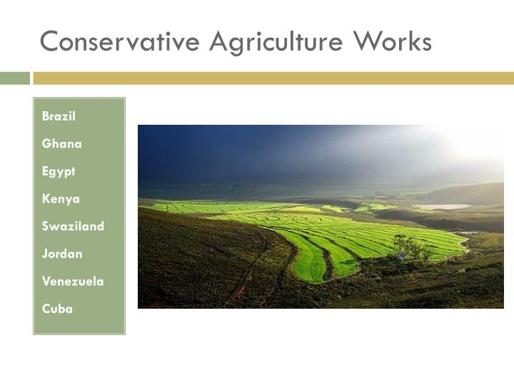 Conservative Agriculture Works