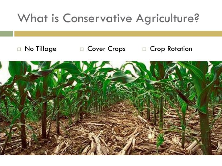 What is Conservative Agriculture?