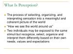 what is perception