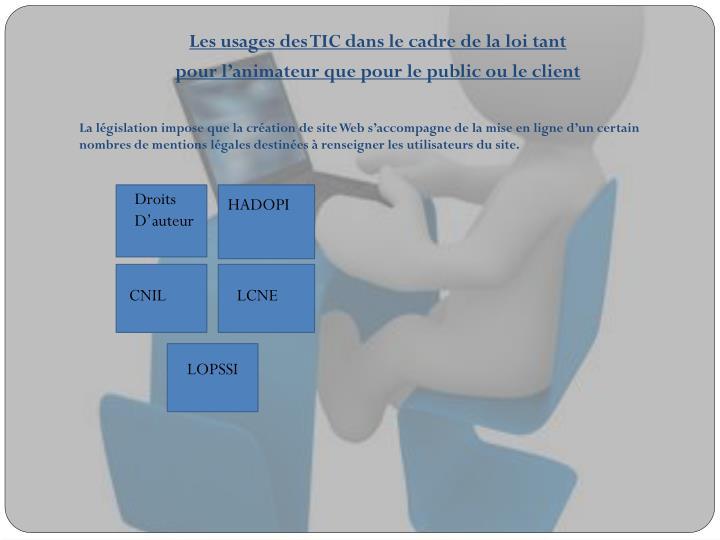 Les usages des TIC dans le cadre de la loi tant