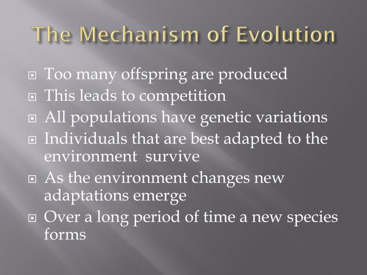 The Mechanism of Evolution