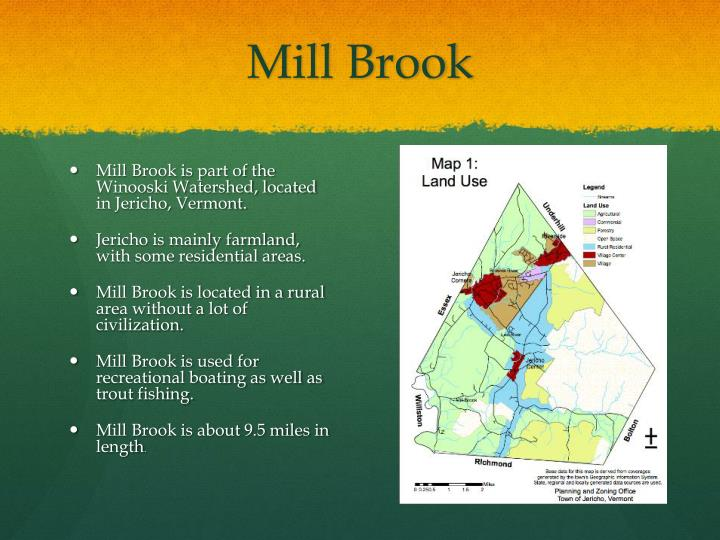 Mill Brook
