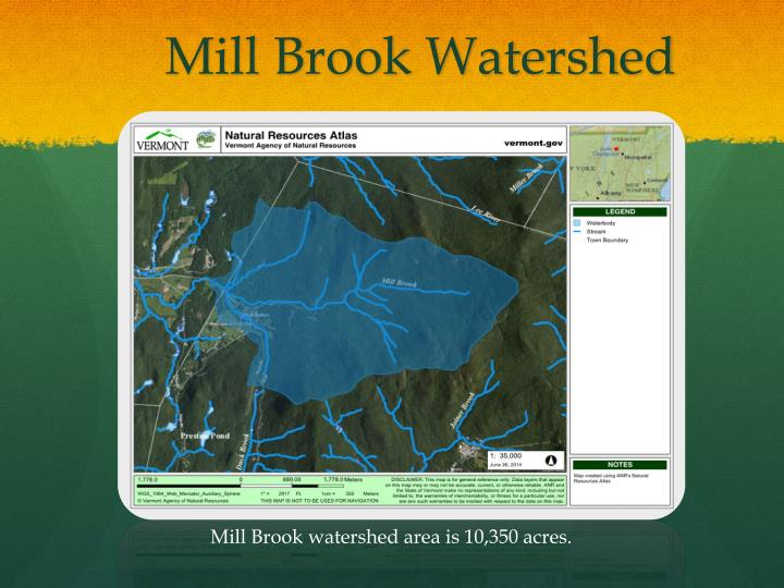 Mill Brook Watershed
