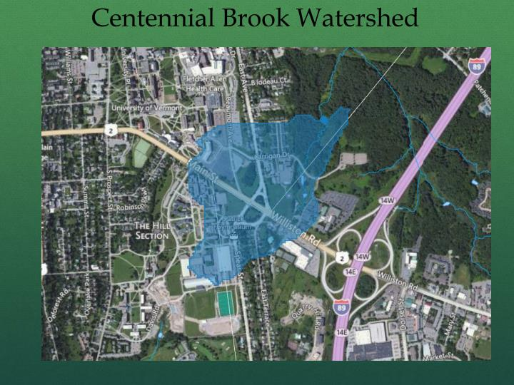 Centennial Brook Watershed