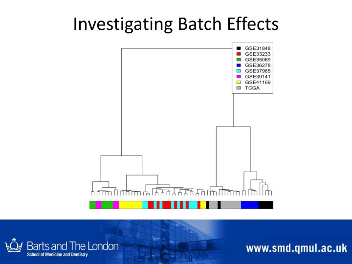 Investigating Batch Effects