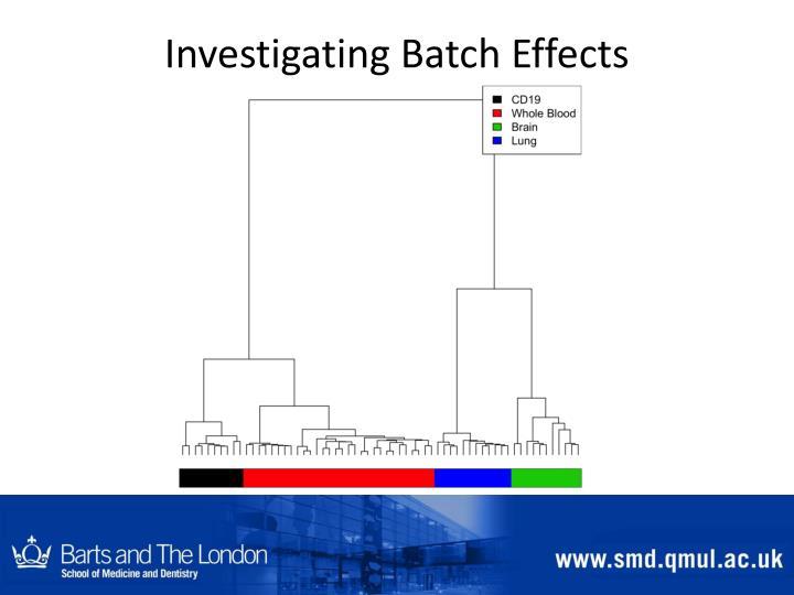 Investigating Batch