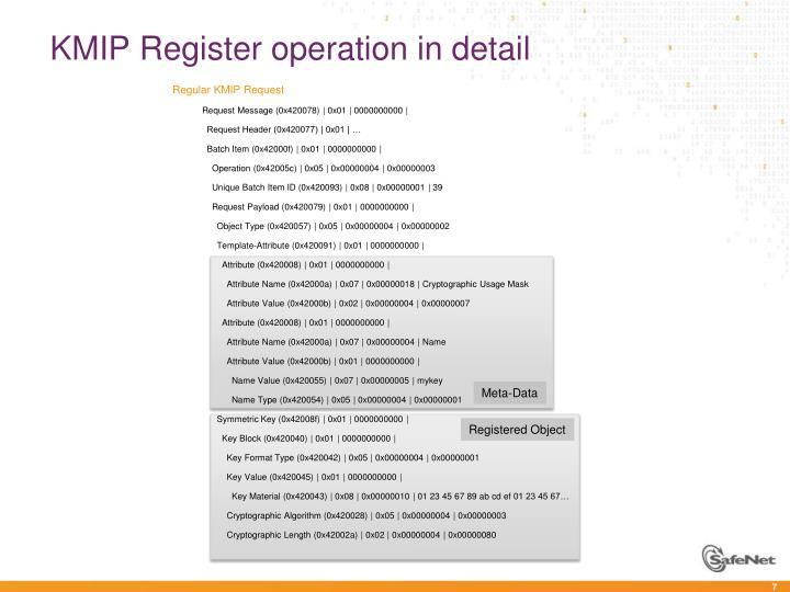 KMIP Register operation in detail