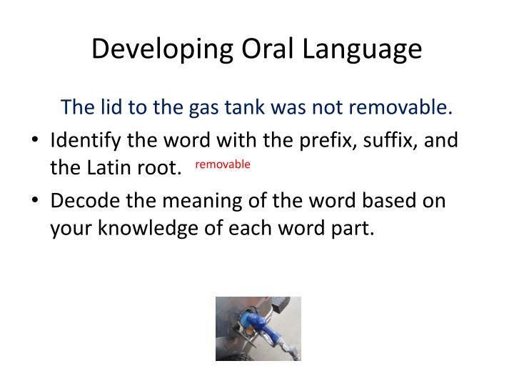 Developing Oral Language