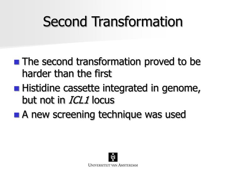 Second Transformation