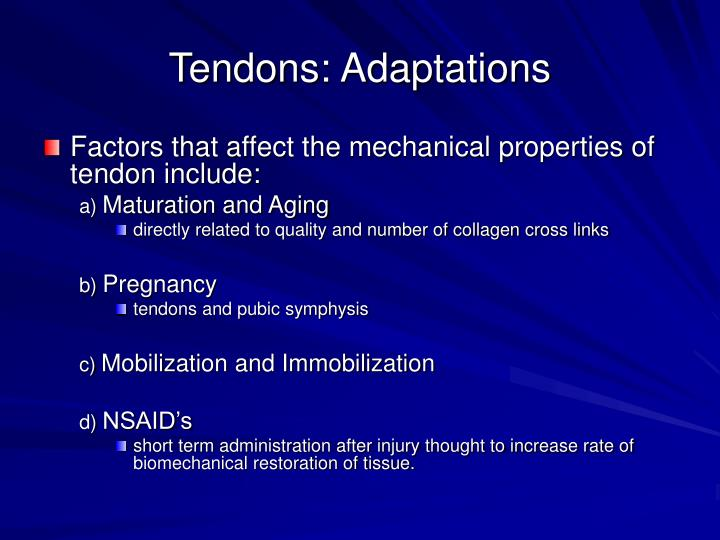 Tendons: Adaptations