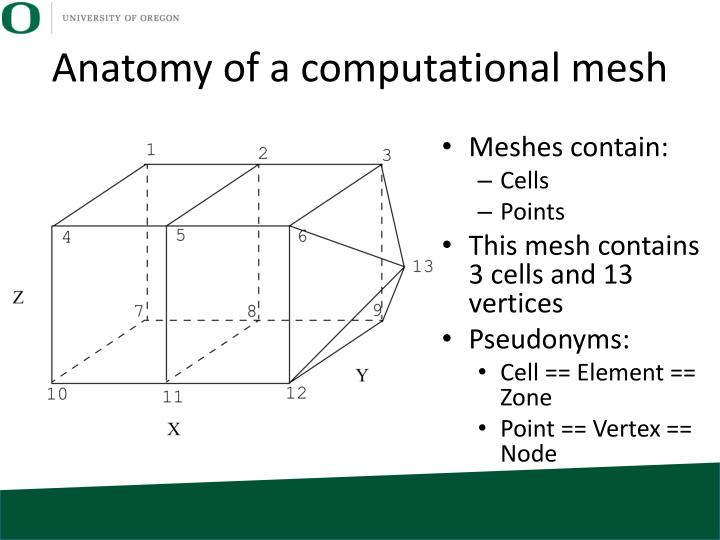 Anatomy of a computational mesh