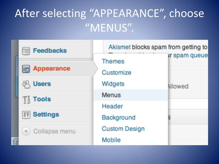 "After selecting ""APPEARANCE"", choose ""MENUS""."