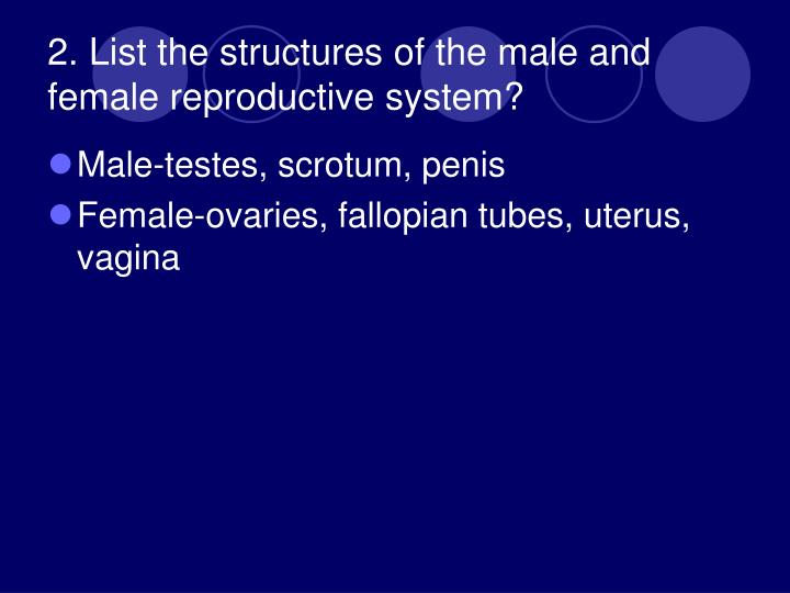 2. List the structures of the male and female reproductive system?