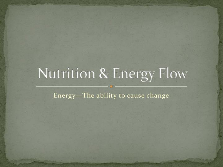 Nutrition energy flow