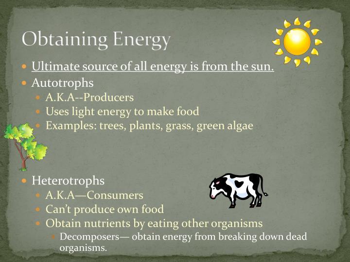 Obtaining Energy