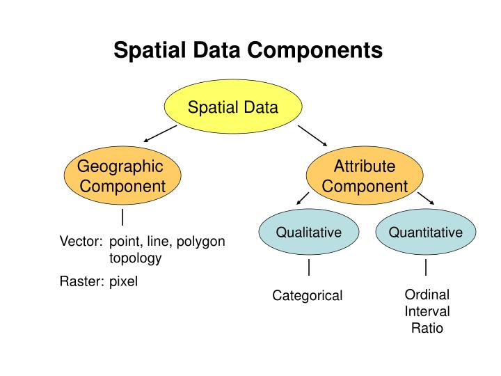 Spatial Data Components