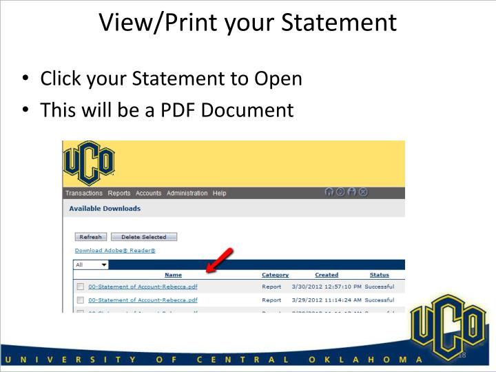 View/Print your Statement