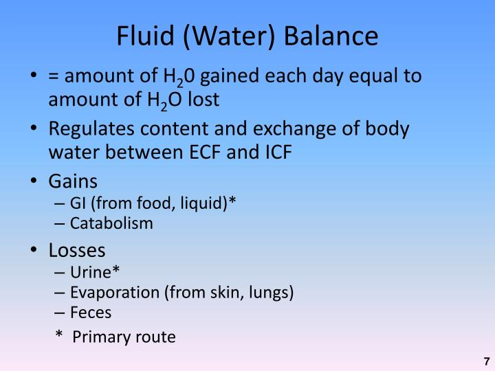 Fluid (Water) Balance