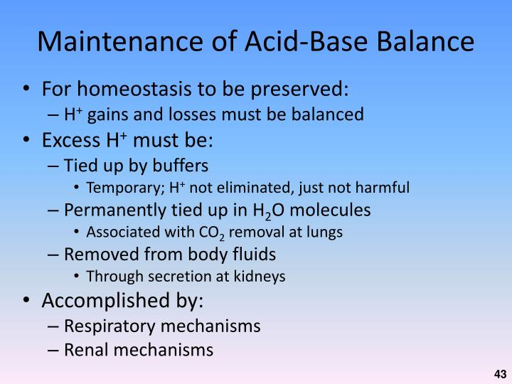 Maintenance of Acid-Base Balance