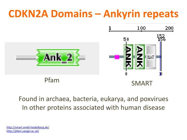 CDKN2A Domains –