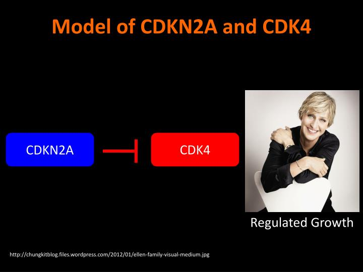 Model of CDKN2A and CDK4