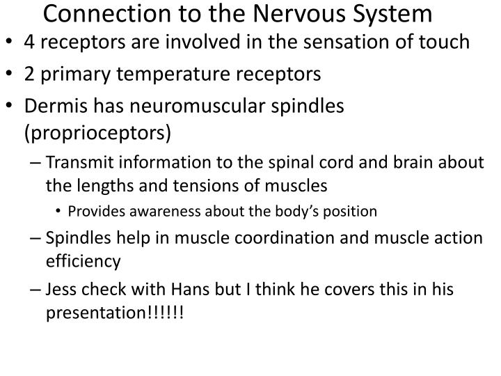 Connection to the Nervous System