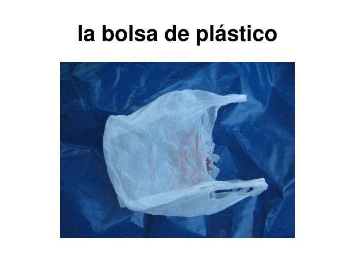 la bolsa de plástico