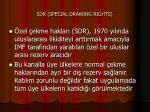 sdr special drawing rights