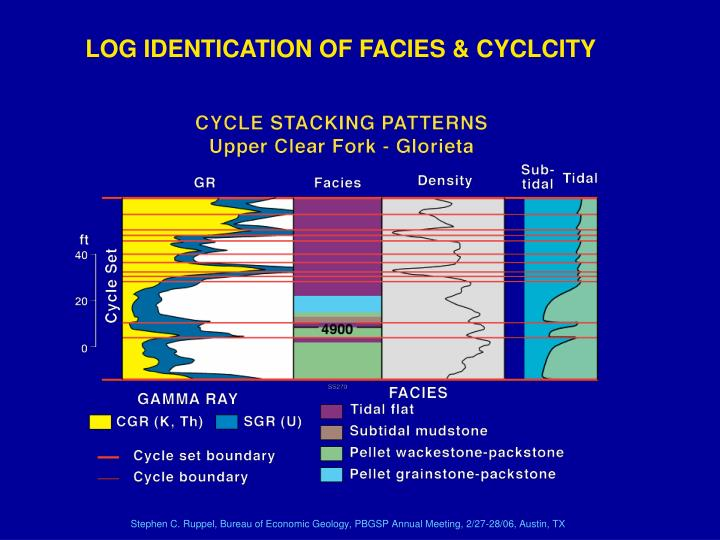LOG IDENTICATION OF FACIES & CYCLCITY