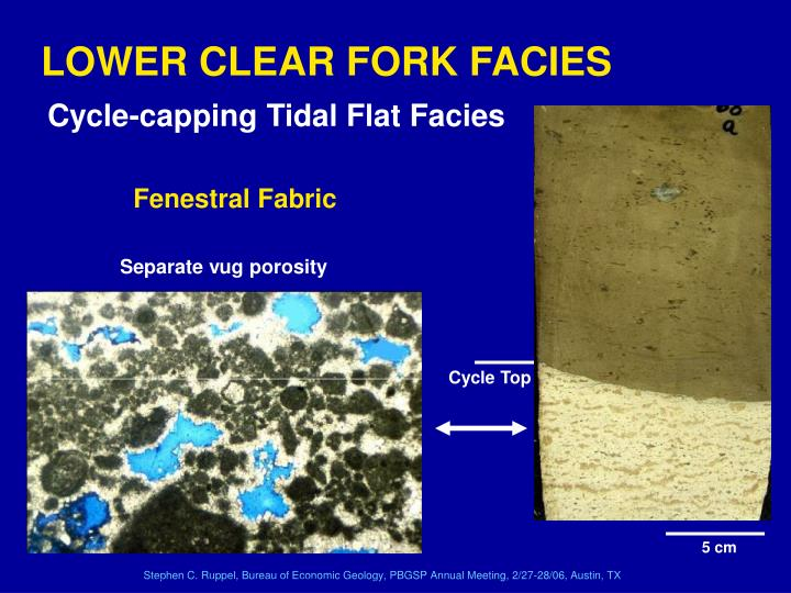 LOWER CLEAR FORK FACIES