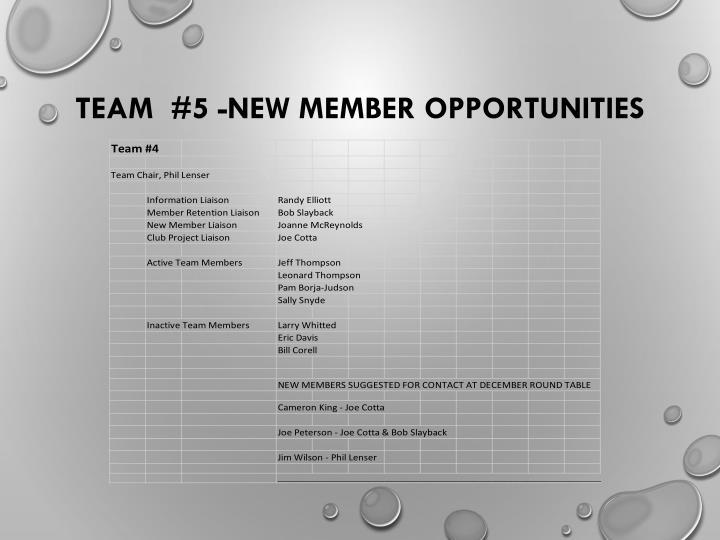 Team  #5 -New Member Opportunities