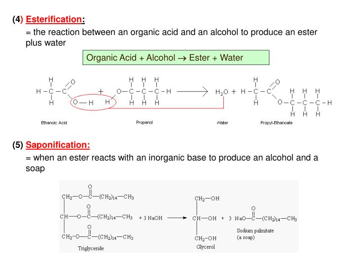 Organic Acid + Alcohol