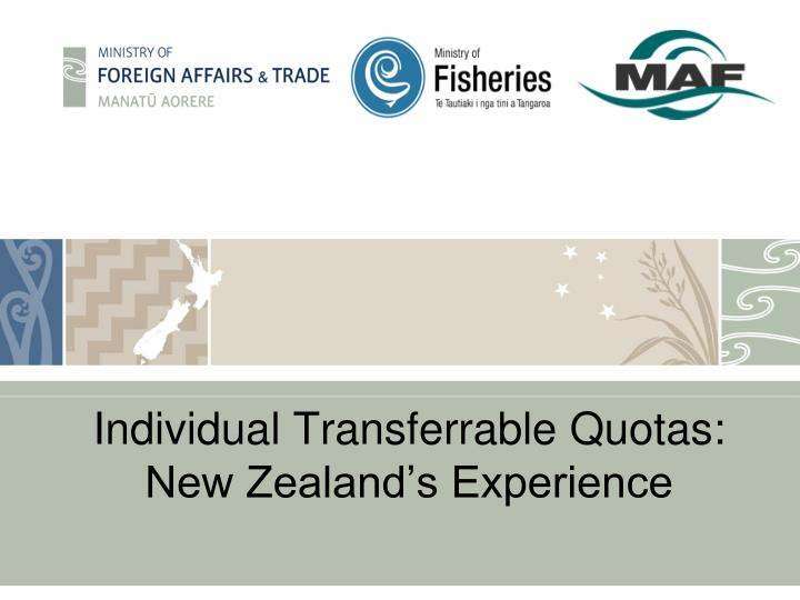 Individual transferrable quotas new zealand s experience