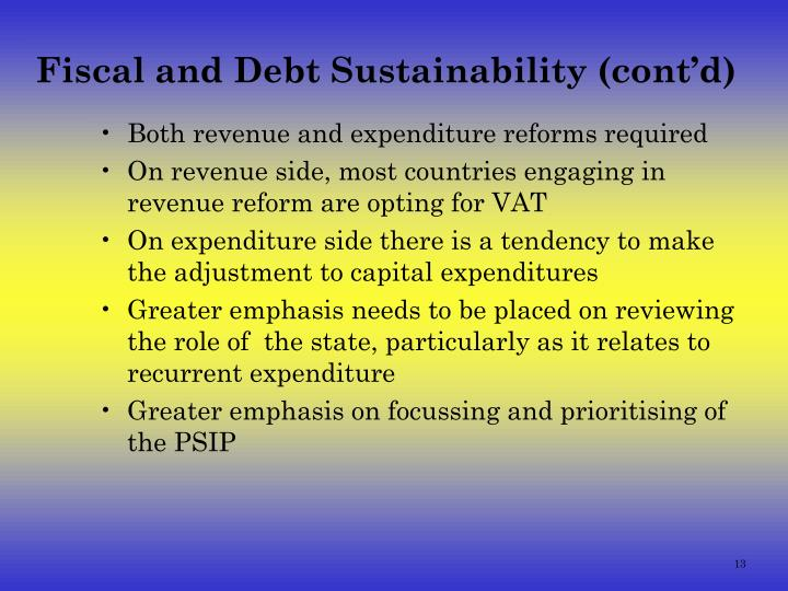 Fiscal and Debt Sustainability (cont'd)