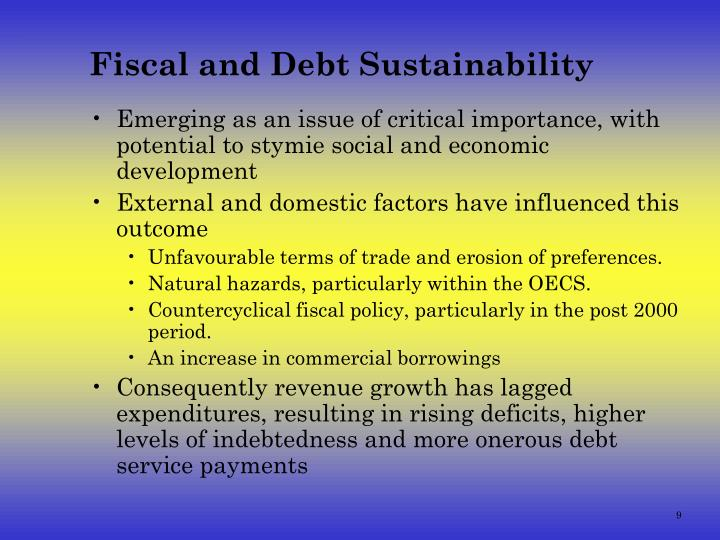 Fiscal and Debt Sustainability