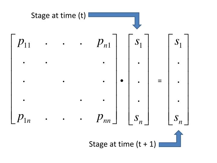 Stage at time (t)